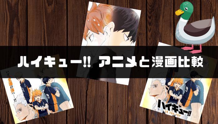 ハイキュー!!(アニメ)の口コミ評判|アニメと漫画どっちが良い?